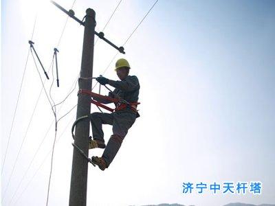 电线杆,电力电线杆