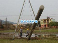 电线杆,通讯电线杆