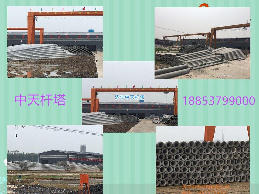 12米水泥电线杆,水泥电线杆,12米电线杆,电线杆厂12m水